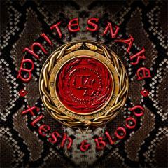 【CD国内】初回限定盤 Whitesnake ホワイトスネイク / Flesh  &  Blood 【初回限定盤】 (+DVD)