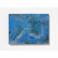 【CD】 サカナクション  / 834.194 【完全生産限定盤B】(+DVD) 送料無料