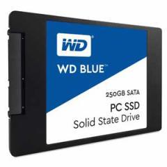 ウエスタンデジタル WDS250G1B0A WesternDigital SSD WD Blueシリーズ 250GBWesternDigital WD Blue[WDS250G1B0A]【返品種別B】