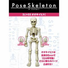リーメント ポーズスケルトン ヒト03 オオキイヒト 【返品種別B】
