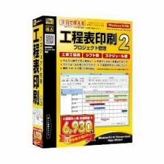デネット コウテイヒヨインサツプロジカンリ2W 工程表印刷 プロジェクト管理2[コウテイヒヨインサツプロジカンリ2W]【返品種別B】