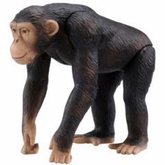 タカラトミー AS-14 アニア チンパンジー 【返品種別B】