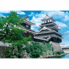 アポロ社 日本の城 中津城−大分 300ピースジグソーパズル 【返品種別B】