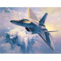 ハセガワ 【再生産】1/48 F-22 ラプター【PT45】プラモデル 【返品種別B】