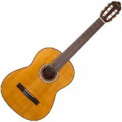 ヴァレンシア VC153 3/4 キッズ向けクラシックギター(1/2サイズ)Valencia[VC15334]【返品種別A】