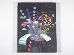 """嵐 DVD ARASHI 10-11 TOUR """"Scene"""" 〜君と僕の見ている風景〜 STADIUM 初回プレス仕様 2枚組"""