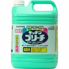 スマイルチョイス 業務用キッチンブリーチ(5kg) 洗剤 漂白剤/4978951040498