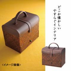 収納ボックス生活雑貨 収納/G−5683B