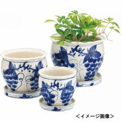 陶器植木鉢3点セット(受皿付)園芸用品 ガーデニング エクステリア/UH03/3DBB
