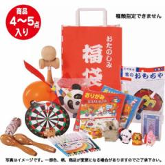 おもちゃおたのしみ福袋 小雑貨 子供 キッズ/5289