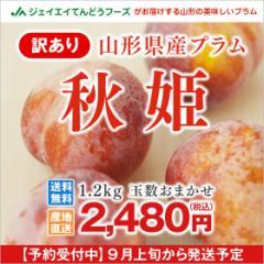 【訳あり】山形県産 プラム『秋姫』ご自宅用 約1.2kg すもも 9月上旬〜出荷予定 i02