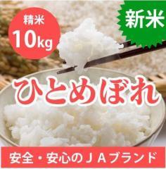 【送料無料】 山形県産 ひとめぼれ 精米 10kg(5k...