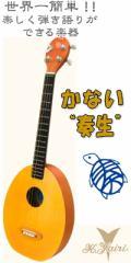 K.yairi Kヤイリ 一五一会 奏生(かない) 【z8】