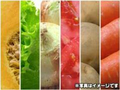 【安心の有機JAS】有機野菜の実力を!大地の恵みお試しセット(送料無料) (ft)