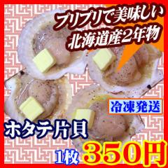【商番1802】北海道産2年物ホタテ片貝 12〜13cm 1枚 バーベキューなどにオススメ