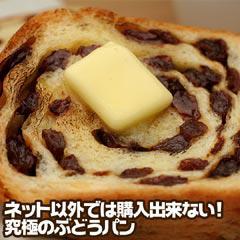 TV雑誌で人気【送料無料】究極のぶどうパン レーズンパン レーズン含有量72% ブドウパン/ブリオッシュ (pn)