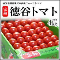 【送料無料】徳谷トマト!!幻の塩トマト!!高知県徳谷地区の徳谷とまと(4kg)平均糖度10度前後【塩トマト・とまと・フルーツトマト】