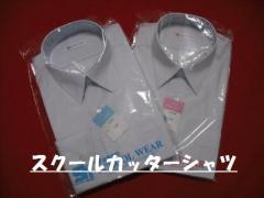 形態安定半袖カッターシャツ男子 サイズが選べる2枚組 学生服・制服【サマー】