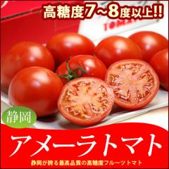 【送料無料】アメーラトマト(約900g)野菜ソムリエが選ぶベジフルサミット品評会で第1位!!高糖度フルーツトマト【とまと】春野菜
