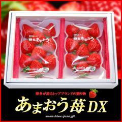 【送料無料】博多あまおう(甘王)いちごDXデラックスグレード!ギフト包装(270g×2パック)【いちご/イチゴ/苺】