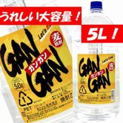 激安大特価!麦焼酎GANGAN(ガンガン) 25度  大容量 5Lペット!
