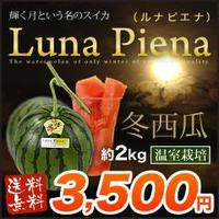 【送料無料】西瓜は夏だけではございません!高知県産 温室すいか