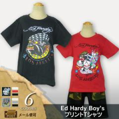 Ed Hardy(エド・ハーディー) Boys プリント半袖Tシャツ [キッズ/子供服] (c34) [メール便OK] 105194