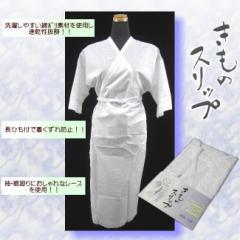着物スリップ 綿レース 袖口 きものスリップ 和装 肌着 肌襦袢 ランジェリー 日本製 Mサイズ Lサイズ