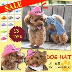 定形外 送料無料 愛犬 犬用 カウボーイハット スター スタッツ付き (1) ファッション 帽子 イベントドッグカフェ 中折れハット 『T』 ┃