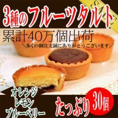 3種のフルーツタルトどっさり30個/洋菓子/常温便