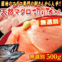 無選別 『天然マグロ』 切り落とし (メバチ・キハダ) 業務用500g!! ※冷凍 ○