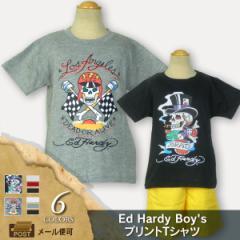 Ed Hardy(エド・ハーディー) Boys プリント半袖Tシャツ [キッズ/子供服] (e43) [メール便OK] 105164