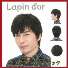 【Lapin dor】 ラパンドアール メンズウィッグ スマートショート ナチュラルブラック 5699