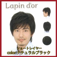 【Lapin dor】 ラパンドアール メンズウィッグ ショートレイヤー ナチュラルブラック 5729