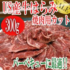 牛はらみ焼肉用カット バーベキューに最適!!/...
