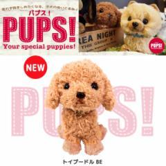 【人気犬種勢ぞろい☆】 PUPS! パプス! ぬいぐるみ Sサイズ トイプードル BE P8121 犬 dog ペット 雑貨 サンレモン