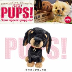【人気犬種勢ぞろい☆】 PUPS! パプス! ぬいぐるみ Sサイズ ミニチュアダックス BK P6881 犬 dog ペット 雑貨 サンレモン