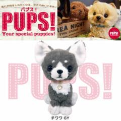 【人気犬種勢ぞろい☆】 PUPS! パプス! ぬいぐるみ Sサイズ チワワ GY グレー P6701 犬 dog ペット 雑貨 サンレモン