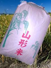 【送料無料】28年産山形県産はえぬき玄米30kg