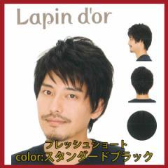【Lapin dor】 ラパンドアール メンズウィッグ フレッシュショート スタンダードブラック 5764