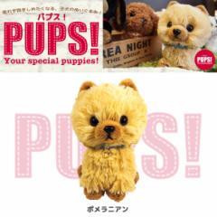 【人気犬種勢ぞろい☆】 PUPS! パプス! ぬいぐるみ Sサイズ ポメラニアン P6911 犬 dog ペット 雑貨 サンレモン