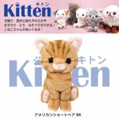 【人気ネコたち大集合!】Kitten キトン ぬいぐるみ  Sサイズ アメリカンショートヘア BR P7531 猫 ねこ CAT 雑貨 サンレモン