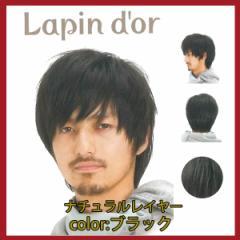 【Lapin dor】 ラパンドアール メンズウィッグ ナチュラルレイヤー ブラック 5615