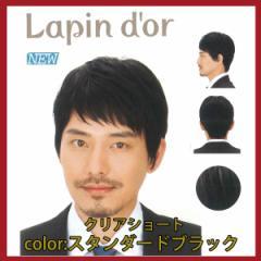 【Lapin dor】 ラパンドアール メンズウィッグ クリアショート スタンダードブラック 5794