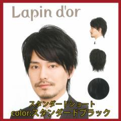 【Lapin dor】 ラパンドアール メンズウィッグ スタンダードショート スタンダードブラック 5786