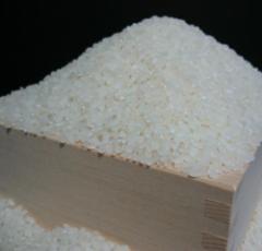お米マイスター・お米アドバイザーおすすめ米減農薬栽培米 滋賀県産キヌヒカリ10kg(5kg×2袋)
