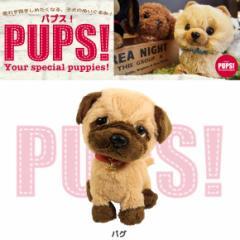 【人気犬種勢ぞろい☆】 PUPS! パプス! ぬいぐるみ Sサイズ パグ P6891 犬 dog ペット 雑貨 サンレモン