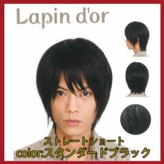 【Lapin dor】 ラパンドアール メンズウィッグ ストレートショート スタンダードブラック 5774