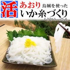 【あおり烏賊を使った】イカ糸づくり(イカソーメン)たっぷり500g《※冷凍便》 chotoku