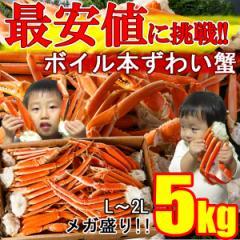 かに 食べ放題メガ盛り5kg★L〜2L訳ありボイルずわい蟹(カニ脚)業務用 送料無料 《※冷凍便》
